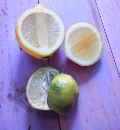 Dibiasakan Yuk, Ini 5 Manfaat Minum Air Lemon Hangat Setiap Hari Untuk Kesehatan Tubuh